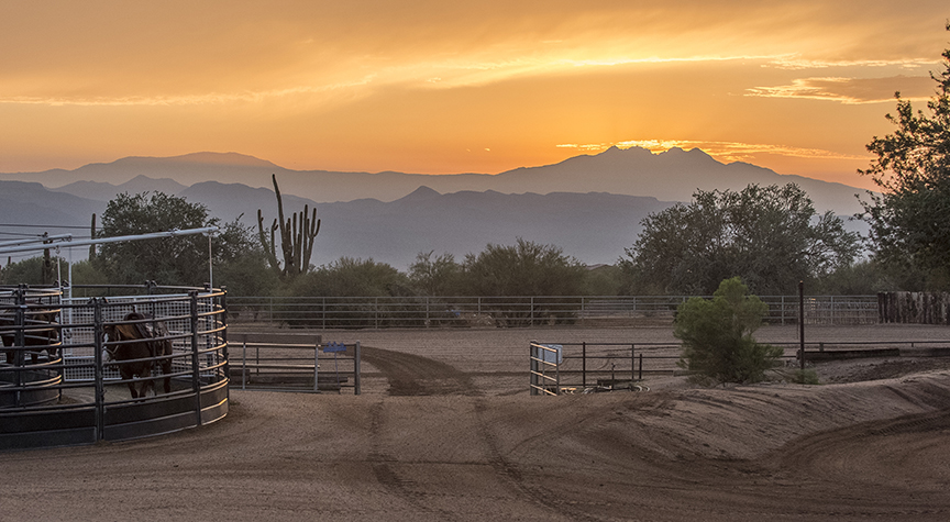 Guest Ranches For Sale | Mason Morse Ranch Company