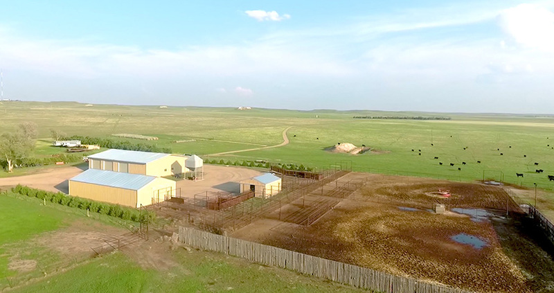 Cattle and horse property for sale