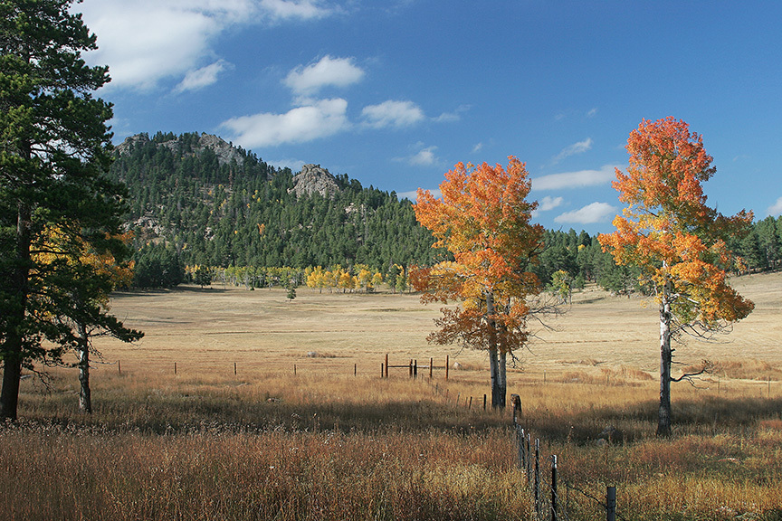 Rocky Mountain Land for sale