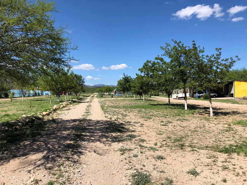 Mexico farms and ranches for sale