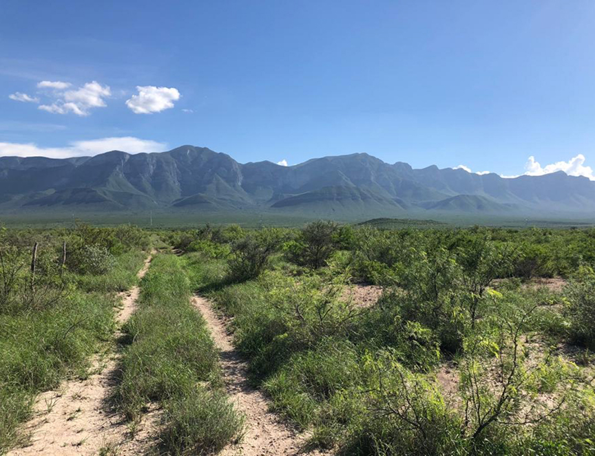Mexico ranches for sale