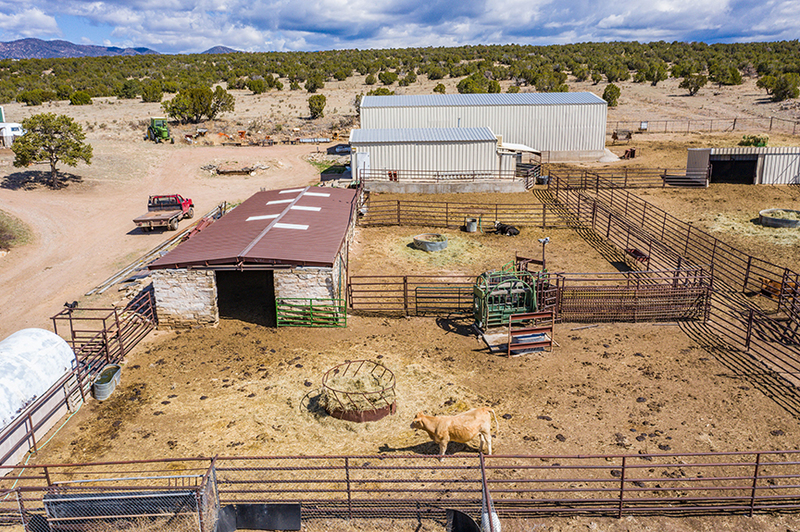 Cattle Ranch For Sale in Colorado