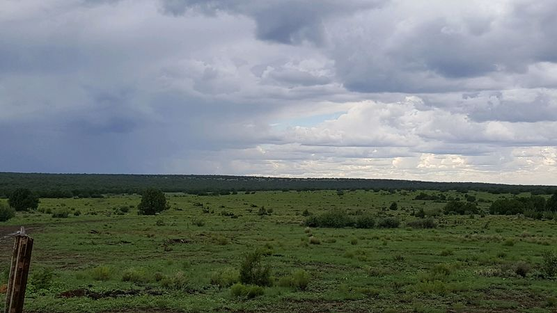 Cattle ranch in Arizona for sale