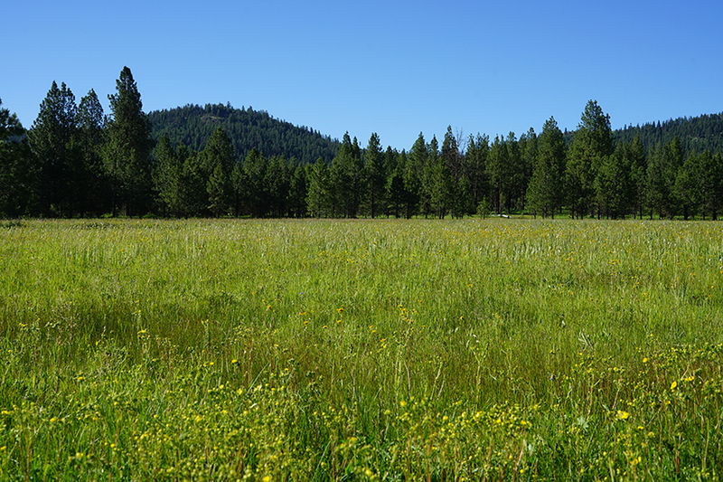Ranches for sale in Oregon