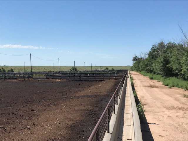Texas feedlot for sale