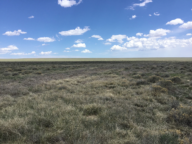 3,782 Acres of Ranchland Set for Auction in Lincoln County, Colorado
