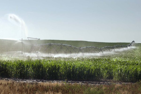 Nebraska Irrigated Farm - SOLD