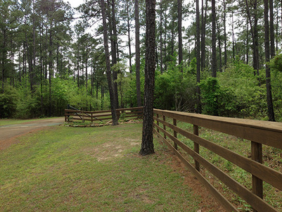 Ranch Land for Sale in east Texas