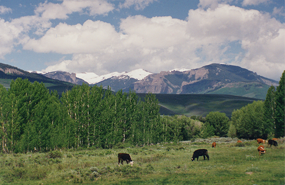 Colorado ranches for sale