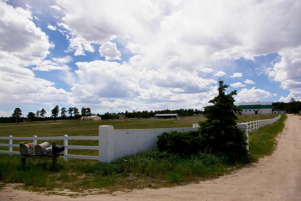 Pine Run Ranch Sold Falcon Colorado Ranchland