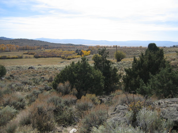 Wyoming elk hunting Properties