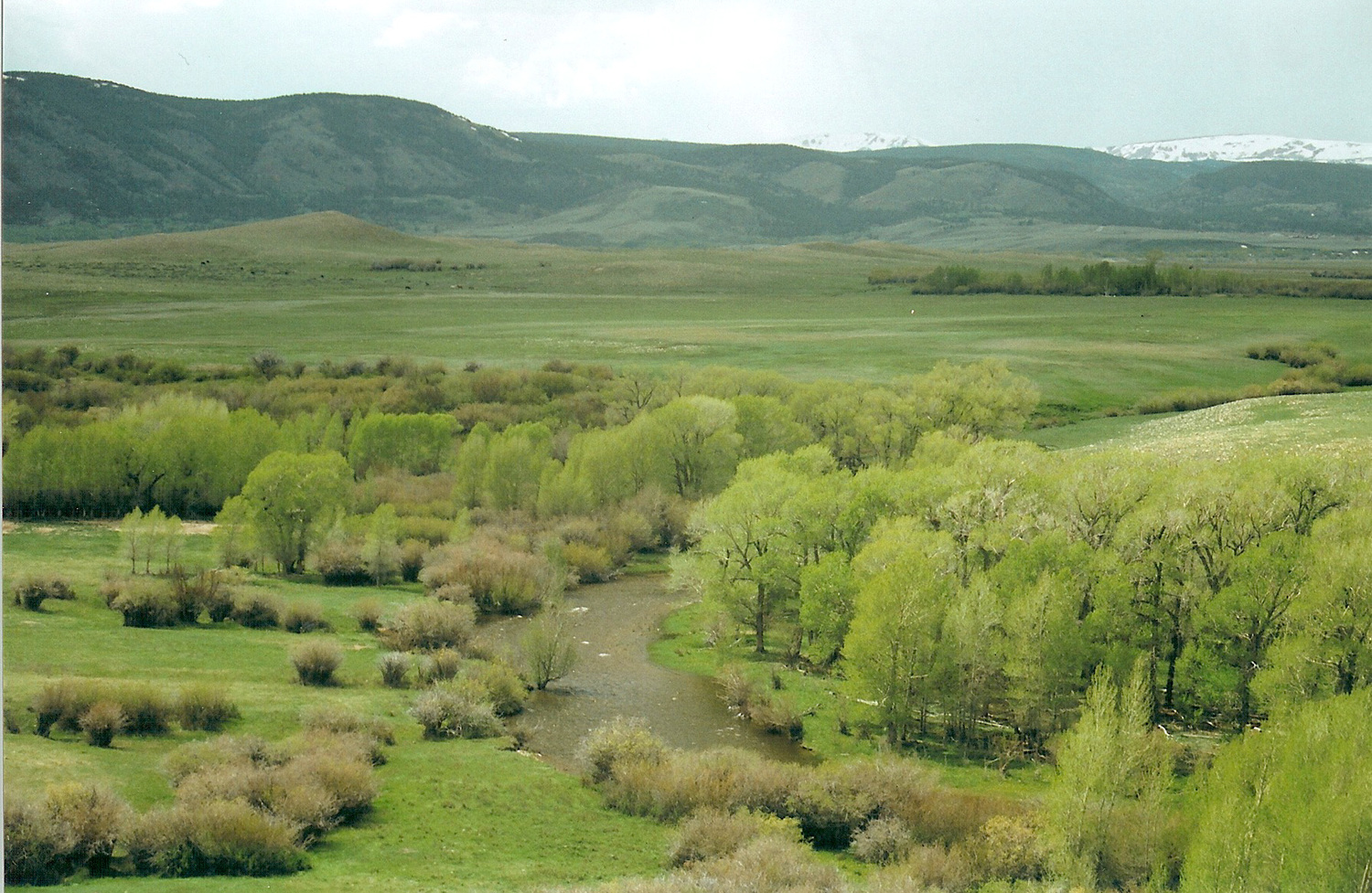 Walker's 91 Ranch in Wyoming - SOLD