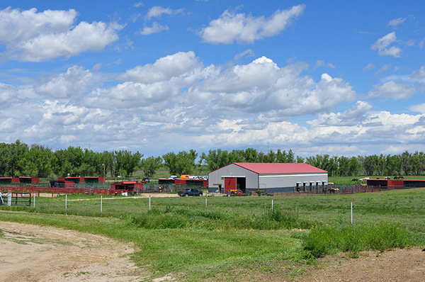 colorado farms for sale