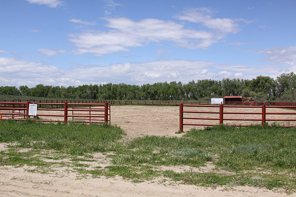 Horse properties in Colorado