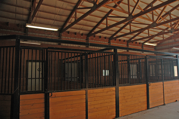 Colorado horse properties for sale