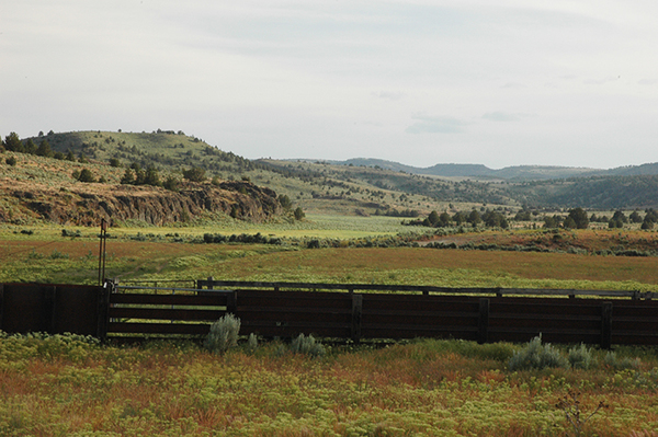 cattle operation for sale in Oregon
