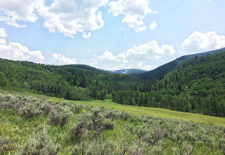 Colorado National Forest Inholding