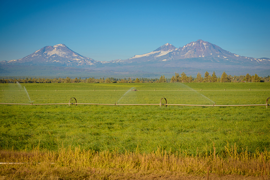 Tumalo Farms in Oregon