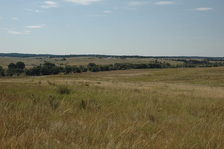 Singing Hills Land Tract in Colorado