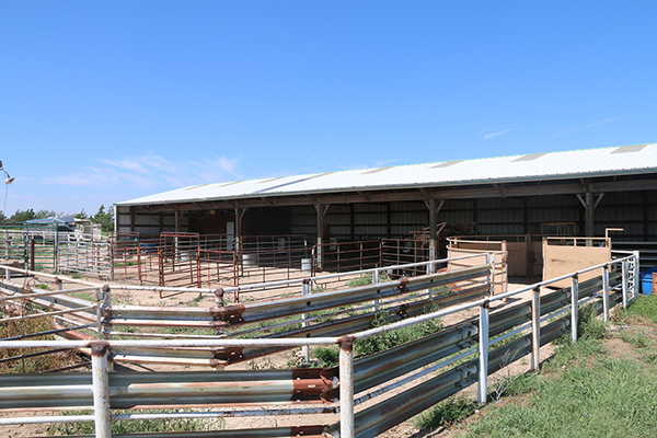 Cattle ranches for sale in Texas