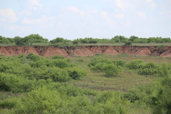 Cattle properties in Texas for sale
