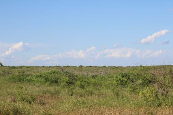 Acreage for sale in Texas