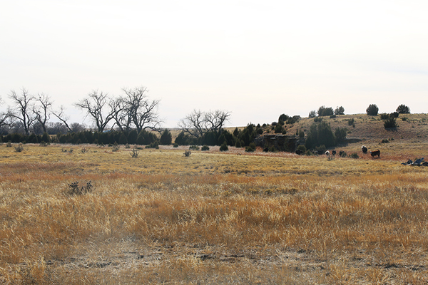 Oklahoma Panhandle acreage for sale