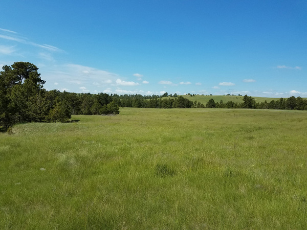 Cattle property in Nebraska for sale