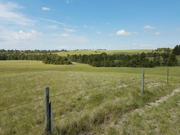 Nebraska cattle property for sale