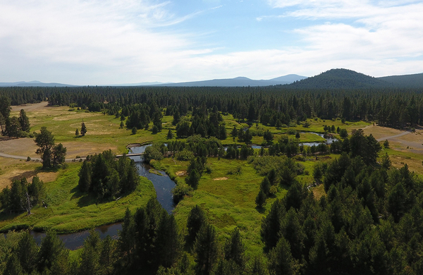 Weyland Diamond Ranch in Oregon