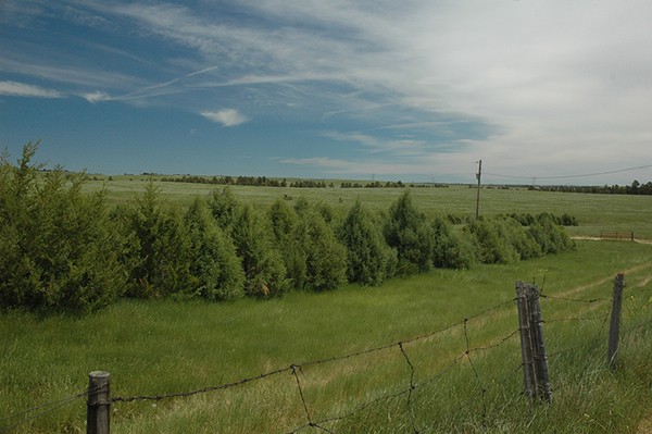 V & L CRP Income Ranch