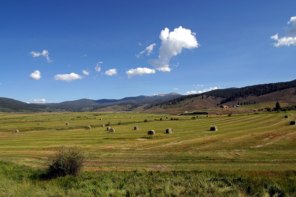 farms and ranches for sale