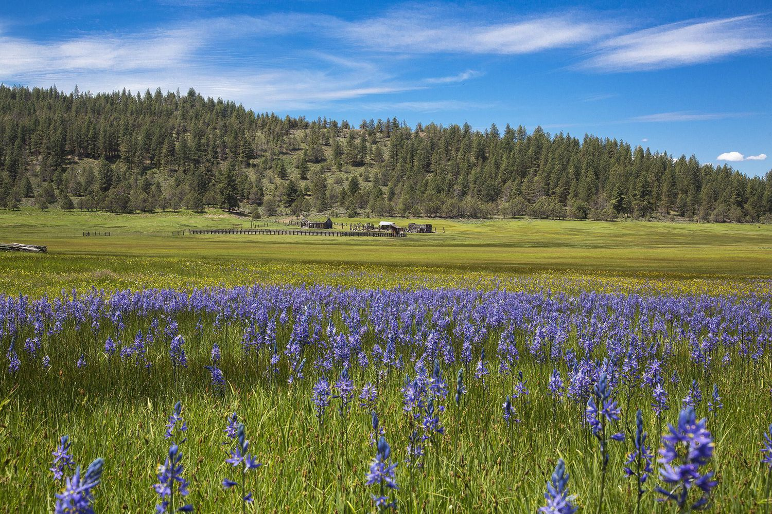 Fishhole Creek Ranch in Oregon