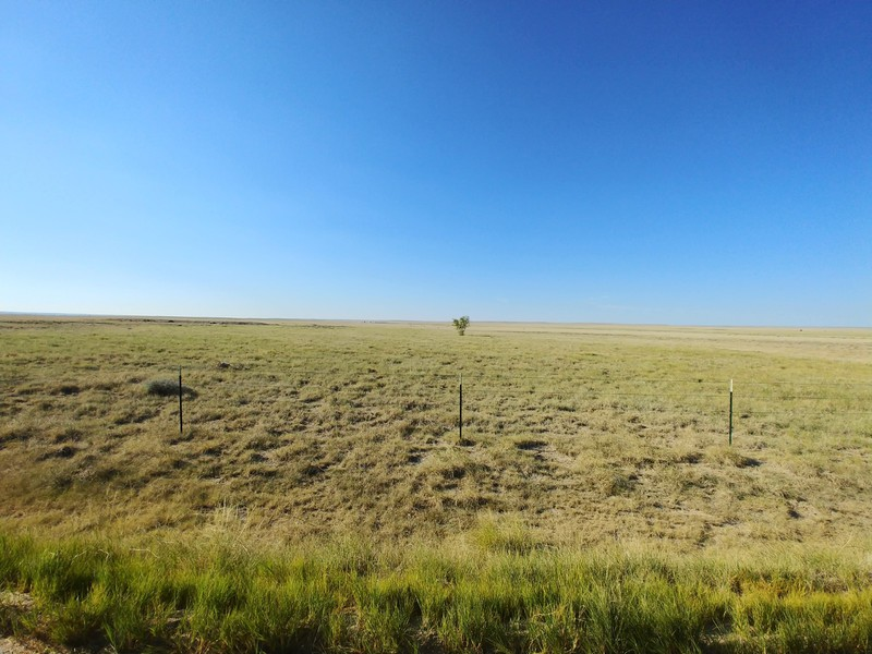 Colorado cattle ranches for sale