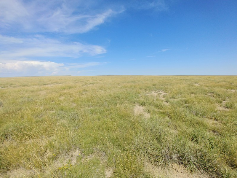 Cattle ranches for sale in Colorado