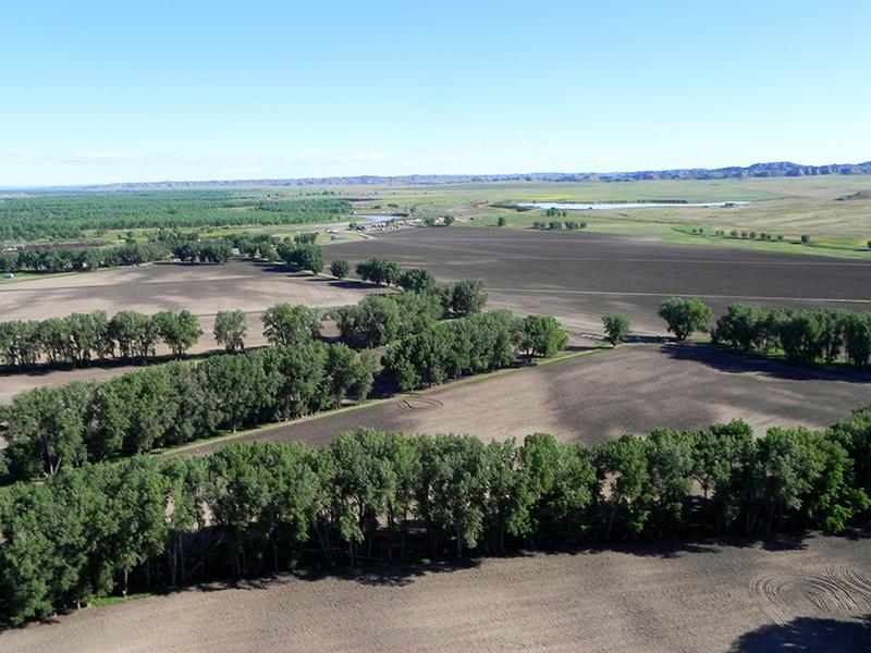Ellis Ranch, Ismay Montana, Custer county, Farms, Ranches