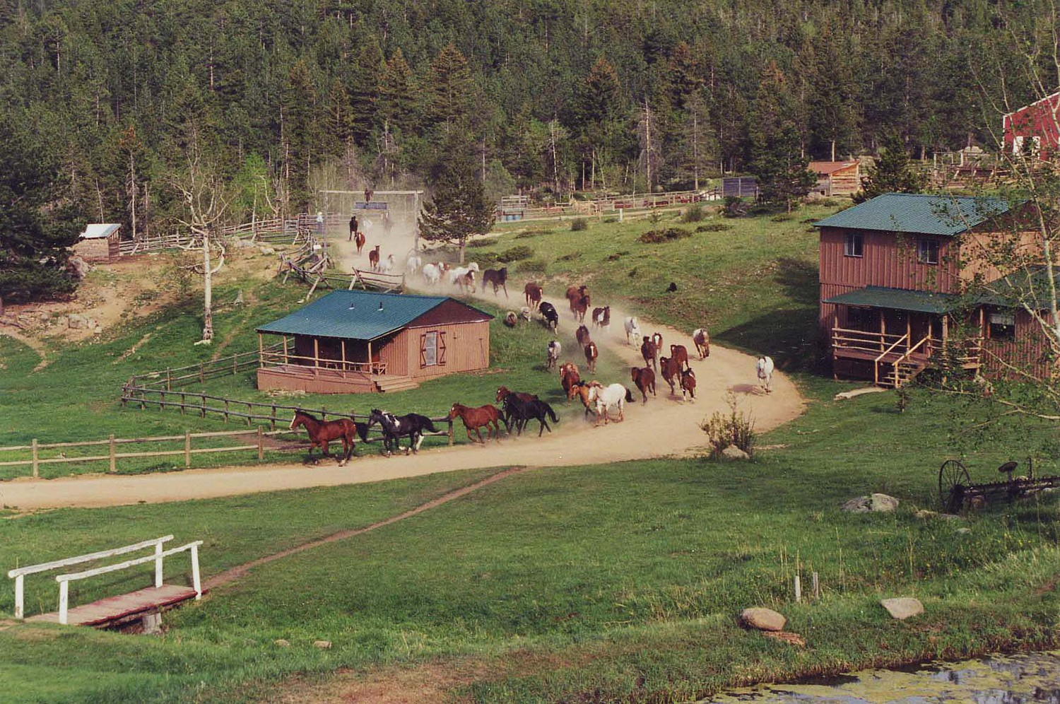 Colorado guest ranches for sale