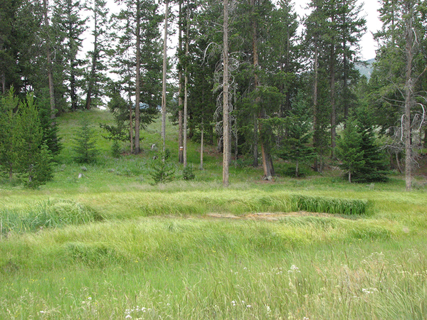 Recreational ranches for sale