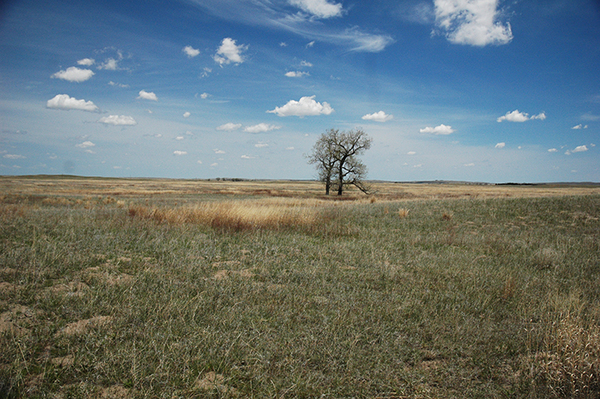 Cattle ranches for sale in Nebraska