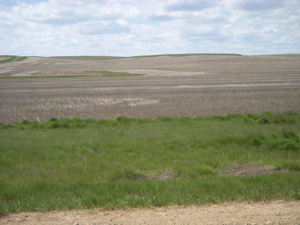 Montana mccone county brockway - Circle Farm Sold Circle Montana County Mccone